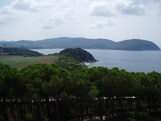 La vista dalla Torre verso il Golfo di Baratti e Populonia