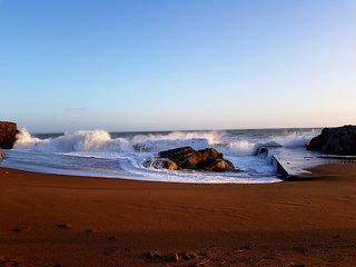 Front de mer - Accès direct plage - T2 avec grande terrasse vue mer