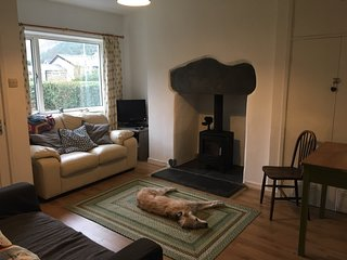 Bwthyn Hwyaden - dog-friendly Snowdonia cottage