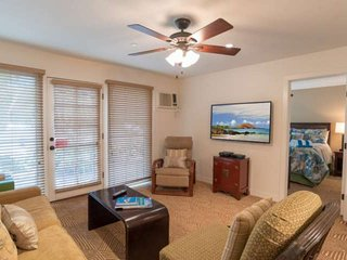 Spacious living room with air conditioning, flat screen television and  queen sized sofa sleeper