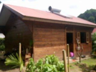 Maison traditionnelle et moderne