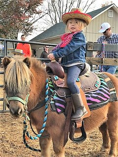 Hand led pony rides are available (please note pony rides are not complimentary & require a fee)
