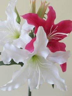 We maken gebruik van bloemen rond het appartement om kleur te maken en een woonde in blik