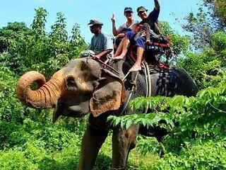 Elephant Trecking, Khao Lak