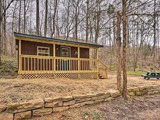 NEW! Cozy Briceville Cabin on River w/Mtn Views!
