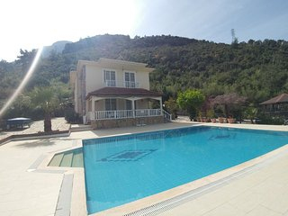 Villa Forest - Villa Buketi for big groups and for amazing View with huge pool