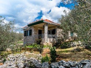 Eco house RIna
