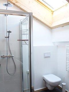 Bathroom 1: shower+toilet