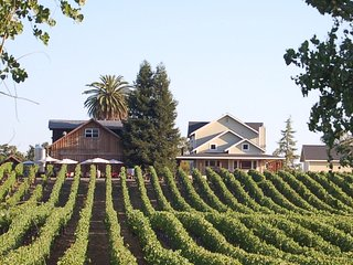 Luxury winery estate overlooking the vineyard!