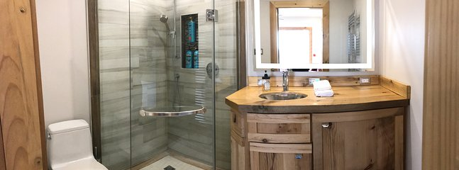 The 'Wow' bathroom feature 40' shower, hand made vanity and lighted mirror.