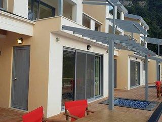 Villa Vass Sapphire Beachfront with Pool