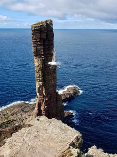 "The iconic ""Old Man of Hoy"""