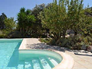 Villa 3 camere 2 bagni piscina privata al sale e vista mare, ulivi alto salento.