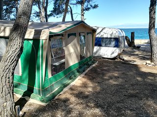 Ugljan Island - Caravan for renting - near the sea - 1