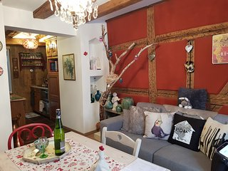La Venitienne appartement 2 chambres 4 personnes Ribeauville centre ville