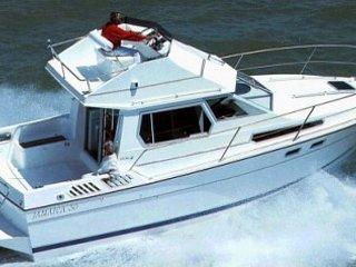 Alquiler de barco de 11m