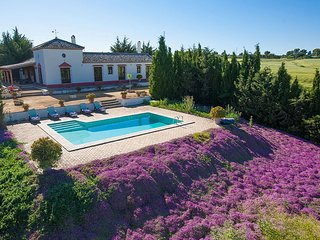 3 bedroom Villa in San Pedro, Andalusia, Spain : ref 5604459