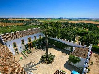6 bedroom Villa in San Jose del Valle, Andalusia, Spain : ref 5604466