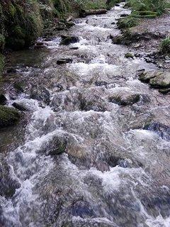 Lydford gorge NT Walks & Tea room