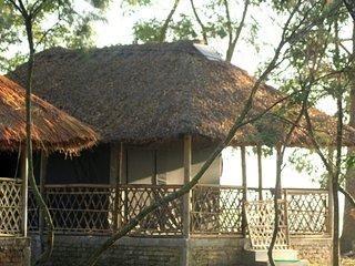 Dhansiri EcoCamp -  Hut Tent 101