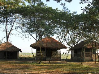 Dhansiri EcoCamp -  Dome Tent