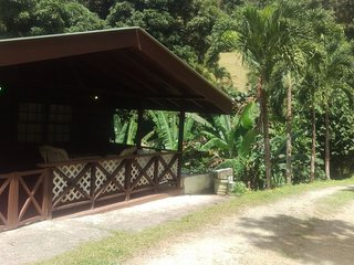 Studio, Hummingbird Apt.  Between the rainforest and sea