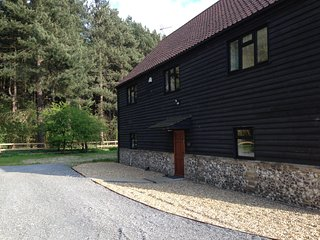 A 'Forest View' in to Kings Forest; a well equipped self catering holiday home.
