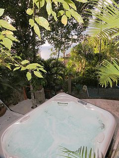 The hot tub's unique jungle-like setting provides water views during the day and a bit of adventure at night
