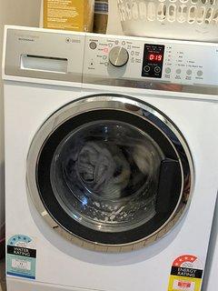 Fisher & Paykel washing machine.