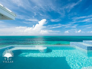 Vacation in a turquoise paradise at Plum Wild  2BR villa on Grace Bay Beach