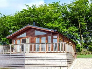 Luxury Lodge, Peaceful & Relaxing Location on the edge of Dartmoor National park