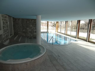 Chateau-d'Oex Apartment Sleeps 6 with Pool and Free WiFi - 5627656