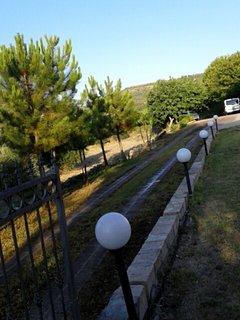 Viale entrata villa
