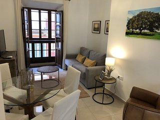 Apartment 3 bedrooms with balcony San Juan