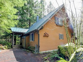 Alpine home w/ hot tub, patio & fireplace - ideal for skiers, hikers & golfers!