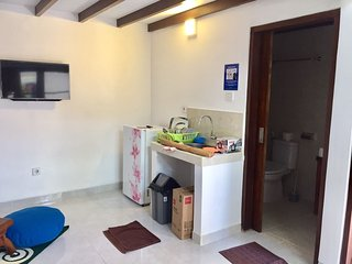 frog house a charming apartment in best bali location