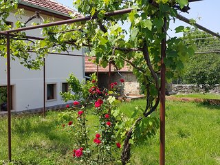 Art Eco Land - Wonderful guest house in the Balkan mountains