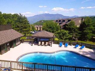 Nature's Haven! 2 Bedroom, 2 Bath, Outdoor Pool, Sauna, 2 Hot Tubs, & Free Wifi