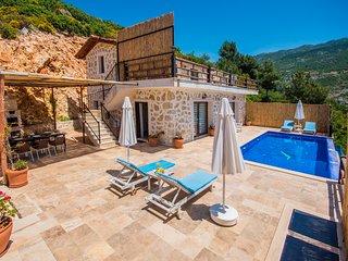 2 Bedroom Villa with Secluded Infinity Pool, Heated Indoor Pool,& Sinema Salon