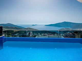 Brand New 1 Bedroom Villa with Secluded Infinity Pool and Great Sea Views