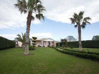 Palm Tree Seaside Villa