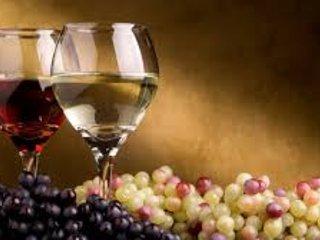We introduce you 10 varieties of excellent Cretan wine (seminars & more)