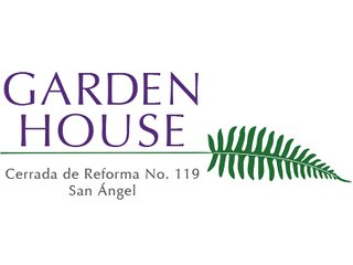SUITE 4B, BAZAAR, Welcome to Garden House in San Angel