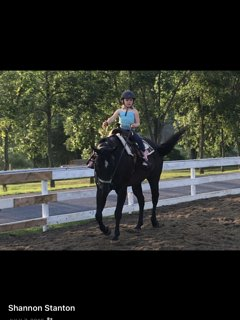 Arrangements can be made for horseback riding lessons