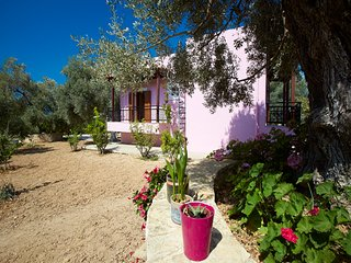 Villa Athina: Experience the real Cretan nature!
