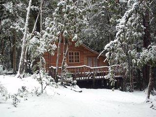 Cabaña Rustica Patagonia Chilena Tita