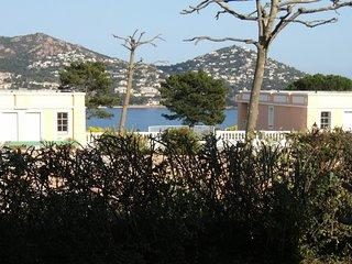 Cap sur la Rade : 2 pieces jardin vue mer R1 -72la