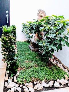 Pequeno jardin interno que invita a relajarse justo frente a la sala.