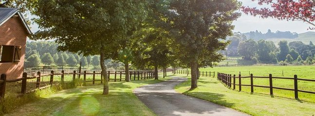The tree lined driveway leads you to the Farmhouse