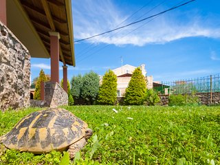 Tortuga Home & Garden